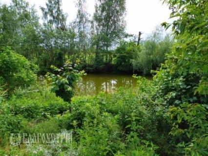 Земельна ділянка, Гуменюка